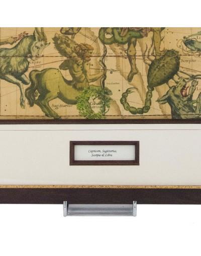 Картина Зодиакална карта